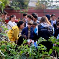 Colegios municipales consolidan prácticas medioambientales y aprenden a gestionar una huerta escolar