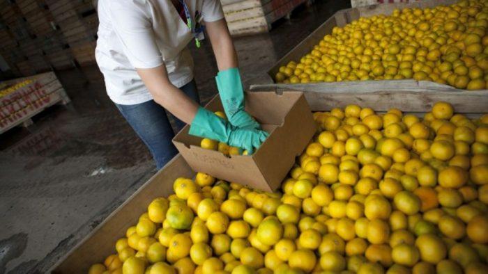 IPC de noviembre anota leve aumento de 0,1% con principal alza en alimentos