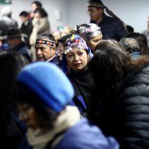 Diputada DC Joanna Pérez oficia a Ministro Moreno por consulta indígena y pide suspenderla para ser reformulada