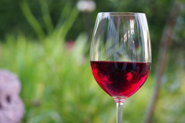 El vino de $6.990 que se posiciona entre los mejores de Chile y el mundo