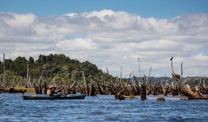El plan provincial para la protección de humedales de Chiloé