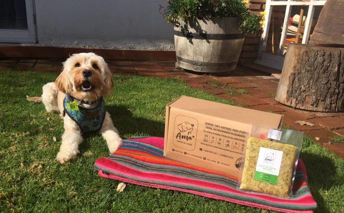 La nueva tendencia de comida natural para perros