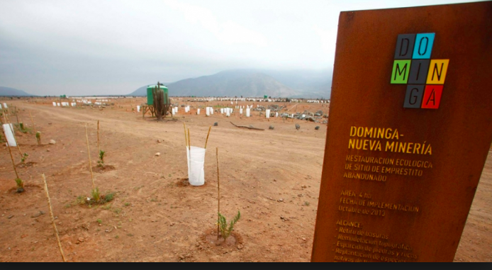 Minera Dominga: el