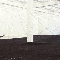 Cildo Meireles: Referente del arte conceptual latinoamericano llega a Chile por primera vez