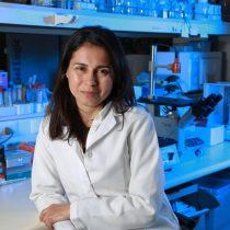 Nuevo test de virus respiratorios valida su efectividad en muestras de pacientes