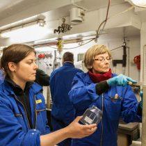 En el tormentoso Paso Drake, científicos actualizan información geológica del suelo oceánico