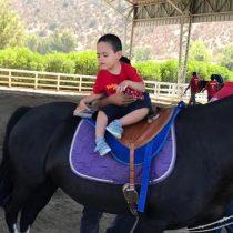 Comuna realizará equinoterapia para menores con discapacidad