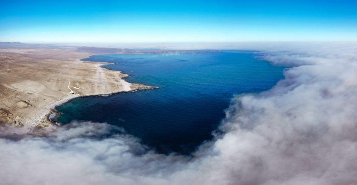 La lucha de los habitantes de Bahía Chascos por proteger la biodiversidad del lugar ante proyecto energético
