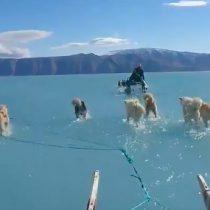 Graves efectos del cambio climático: video muestra las consecuencias del derretimiento de hielo en Groenlandia