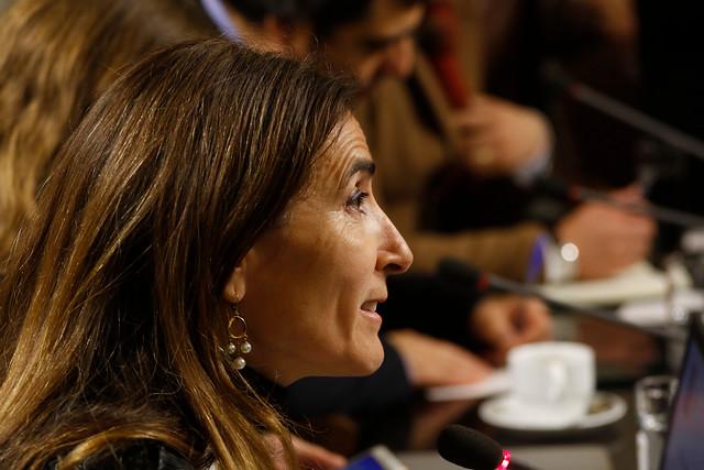 Comisión de Medio Ambiente aprueba en general la reforma al SEIA, un proyecto que no satisface ni a la oposición ni a los empresarios