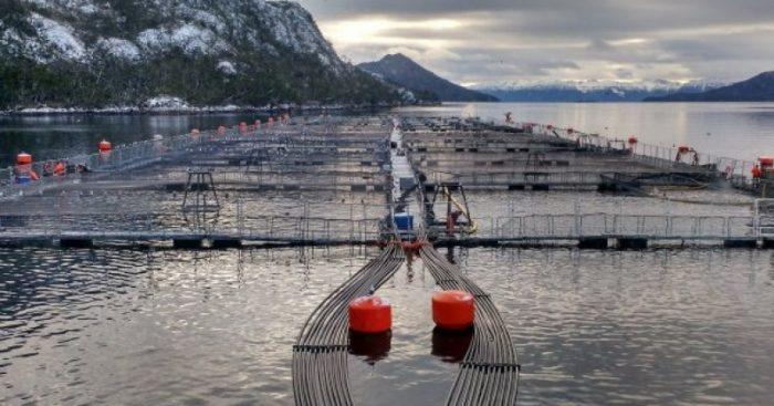Comunidad Yagán exige retiro inmediato de instalaciones de Nova Austral del Canal Beagle
