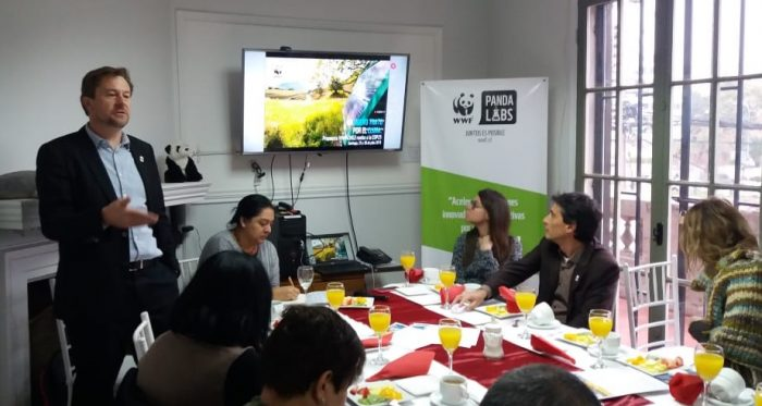 COP25: WWF presenta propuestas para descarbonizar Chile y adaptarse al cambio climático