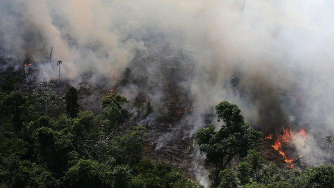 Incendios en el Amazonas: 3 mapas que muestran la dimensión de los fuegos