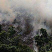 Incendios en el Amazonas: el número récord de fuegos que afectan a Brasil y que también arrasan otros países de Sudamérica
