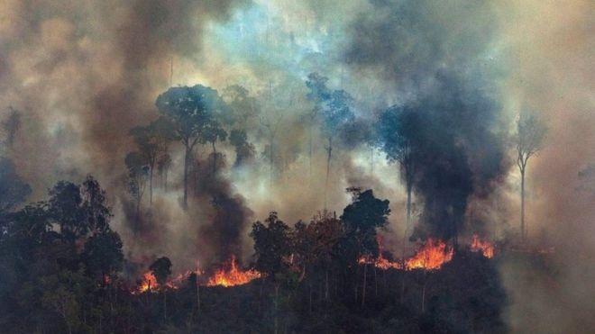 Incendios en la Amazonía: Bolsonaro dice que acepta ayuda internacional siempre que tenga control sobre el dinero