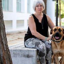 Perros ayudan terapéuticamente a víctimas de violencia machista en España