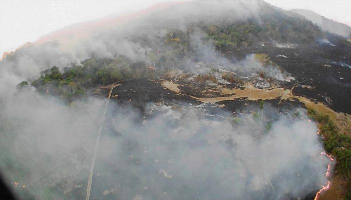 Ambientalistas exigen medidas concretas para frenar incendio en el Amazonas