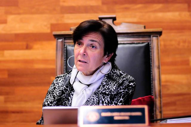Por vínculos con Piñera: diputados Díaz y Hirsch rechazan eventual nominación de Brahm como presidenta del TC