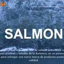 Salmon Leaks II: las manipulaciones y engaños en toda la cadena de producción de salmonera Nova Austral
