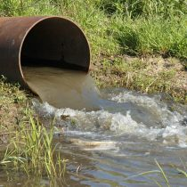 Comisión de Medio Ambiente del Senado despacha proyecto que crea el delito ambiental