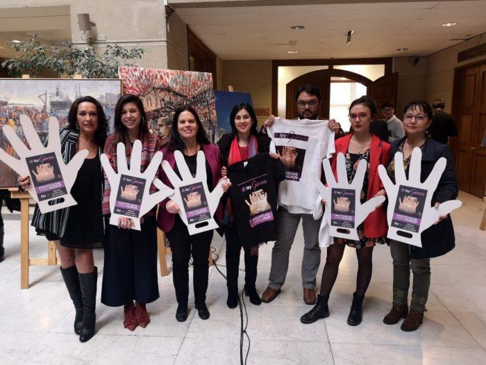 Ley Gabriela: Karol Cariola llama a los senadores de la Comisión de Constitución a no entrampar el trámite