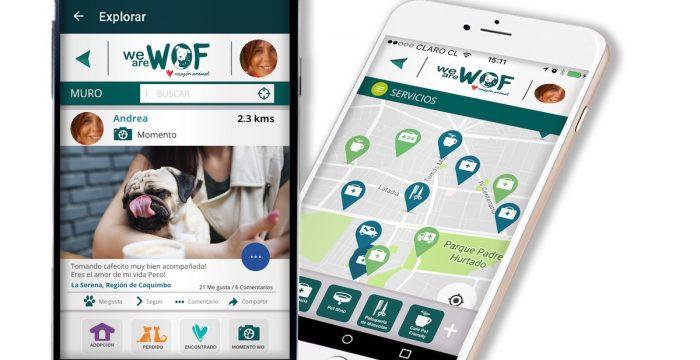 La innovadora app que genera comunidad en torno a la adopción y tenencia responsable de mascotas