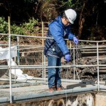 Detectan nueve plantas con riesgo de contaminación similar a la que ocasionó crisis sanitaria en Osorno