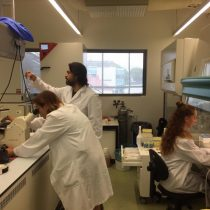 Investigadores advierten limitaciones de terapia experimental con células madre en Esclerosis Mútiple