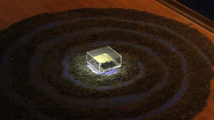 """Exposición """"Bifurcación"""" de Paulina Humeres: reflexiones sobre ciencia y mitología"""