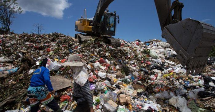 Experto advierte que sobregiro chileno de los recursos ecológicos amenaza el equilibrio de los ecosistemas