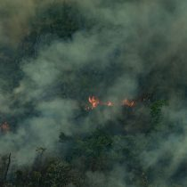 DesBolsonarizar la Amazonía