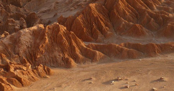 Astrobiólogo chileno investiga la adaptación de vida en Desierto de Atacama para proponer modelo análogo de Marte