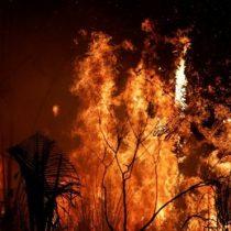 Por qué Noruega donó US$1.200 millones al Amazonas durante 10 años y dejó de hacerlo justo antes de los últimos incendios