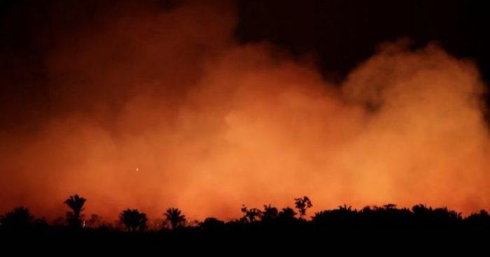 Incendios en el Amazonas: cómo la selva amazónica se volvió más inflamable pese a ser uno de los lugares más húmedos del mundo