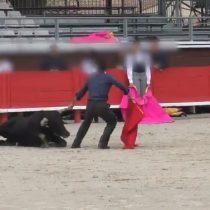 Maltrato a toro por parte de escuela de tauromaquia causa indignación en redes sociales