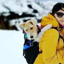 Cómo disfrutar de una vida outdoor junto a tu mascota