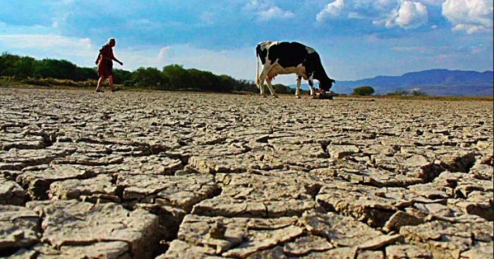 La guerra del agua: las graves secuelas de la crisis hídrica en Chile