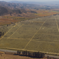 Destruyendo el escaso suelo agrícola en tiempos de emergencia climática