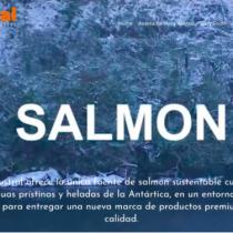 Salmones y antimicrobianos: sinergia entre el periodismo de investigación y la ciencia