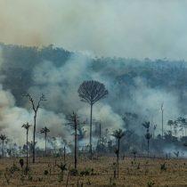 Greenpeace advierte sobre incendio en la Amazonía: