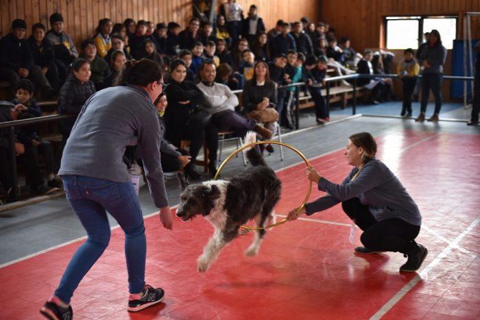 Más de 3 mil estudiantes aprendieron sobre el cuidado responsable de mascotas