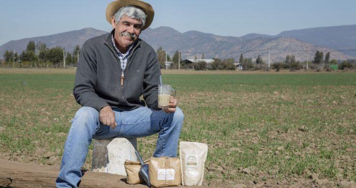 Emprendedor produce harina tostada a la antigua: con callana y molino de piedra