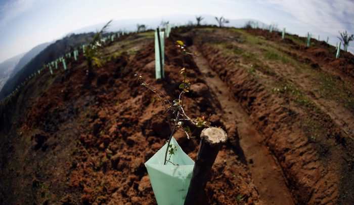 Reabastecer el agua: un compromiso prioritario