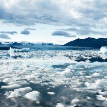 Agua, vida y biosfera moderna