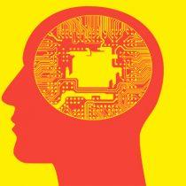 Neurociencias: cómo el internet ha cambiado la forma en que pensamos