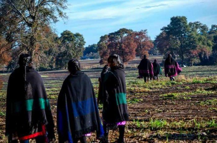 """Mujeres deTemucuicui rechazan el feminismo en la lucha por el territorio ancestral: """"No permitimos ningún tipo de ideología foránea"""""""
