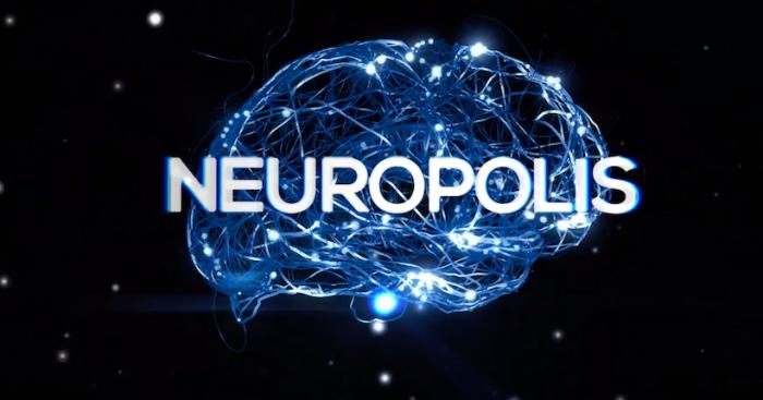Serie científica chilena Neurópolis, una invitación a navegar por el sistema nervioso y los sentidos