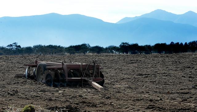 Parlamentarios y alcaldes piden al Gobierno decretar zona de catástrofe en la Región de Valparaíso para enfrentar la sequía