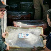 Pescadores de caletas podrán vender productos a través de app