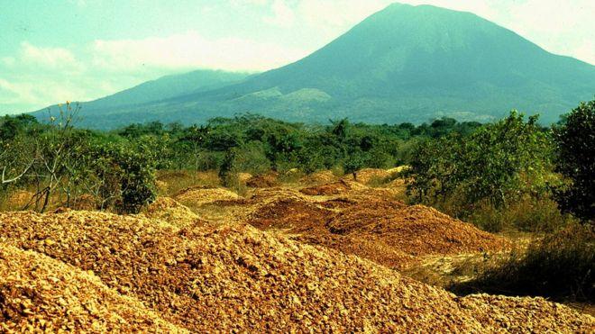 Costa Rica: cómo 12.000 toneladas de desperdicios de naranjas hicieron un